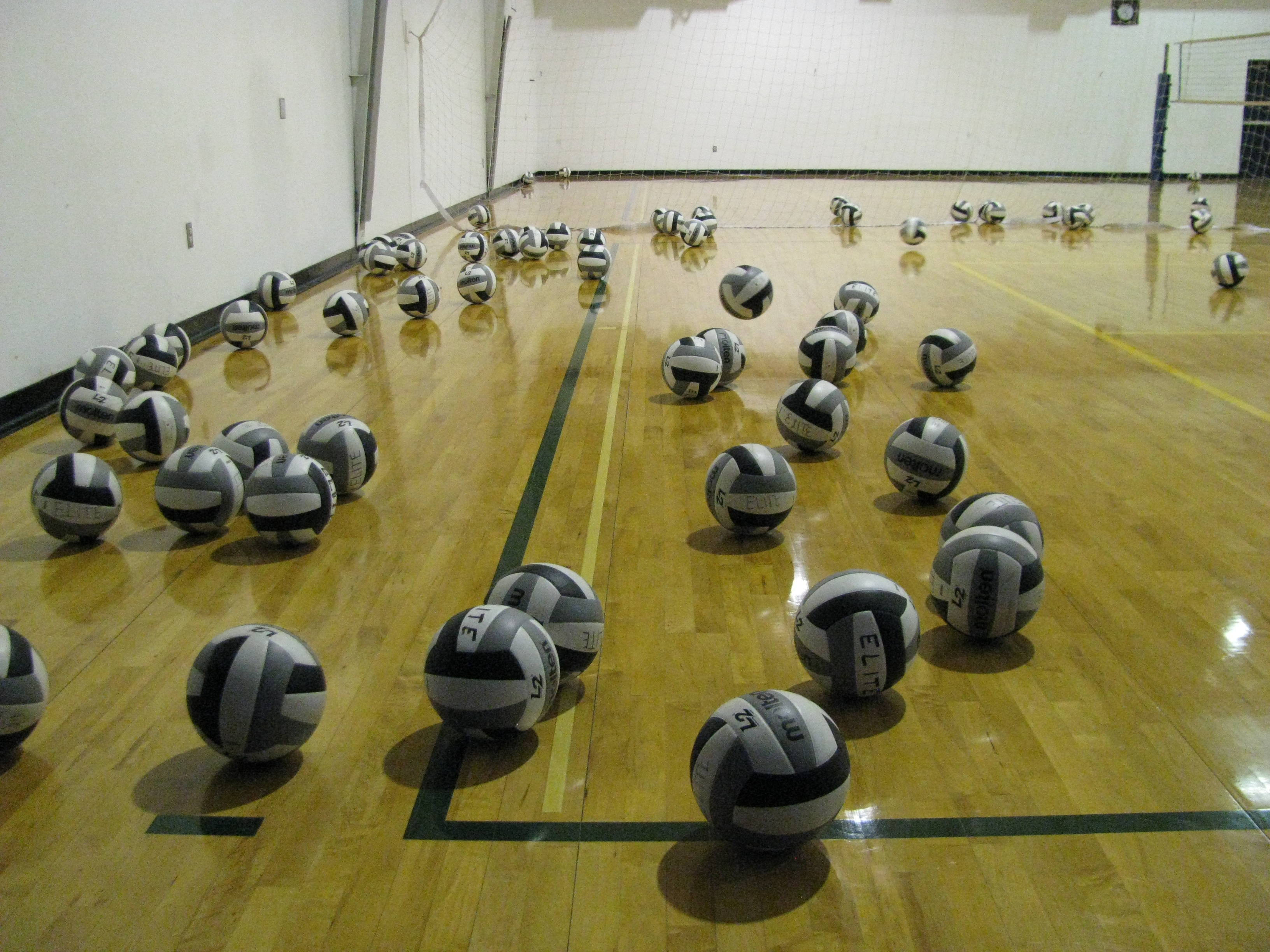 Volleyballs on the court