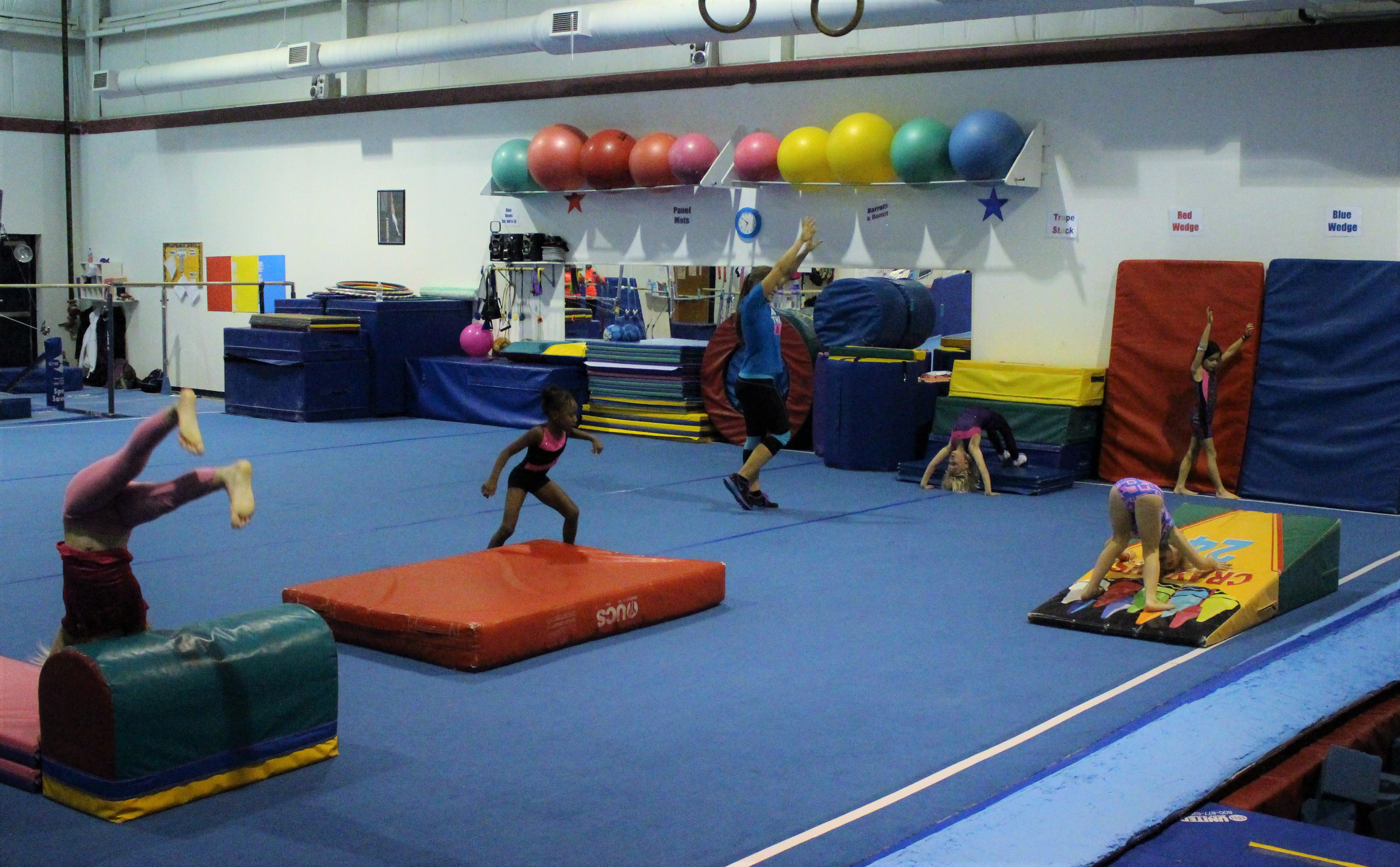 Picture of young female gymnasts in our beginner class tumbling