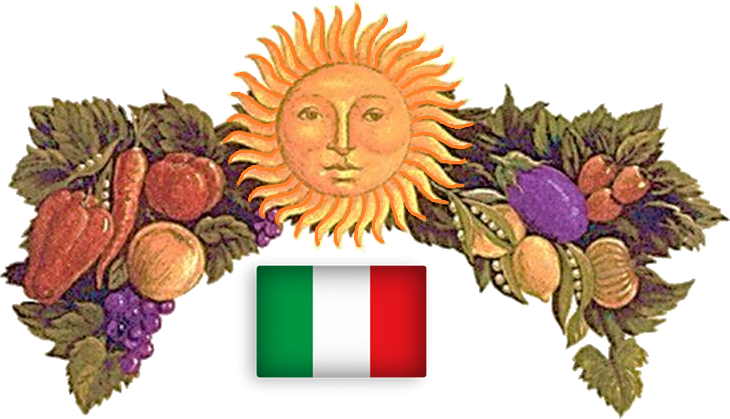 Image of flag of italy with classic Italian motif